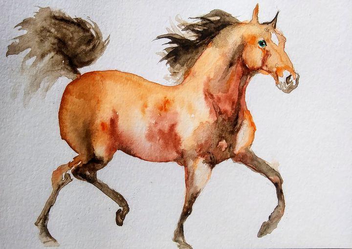 Stallion - Daniela