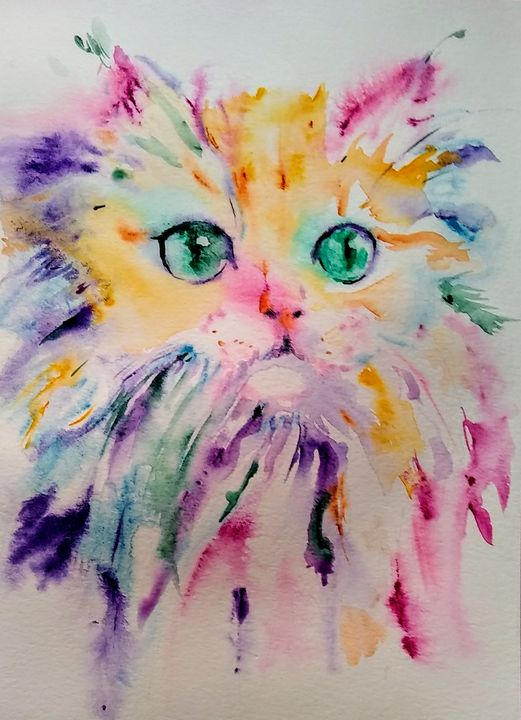 Persian cat with very Pink nose - Daniela