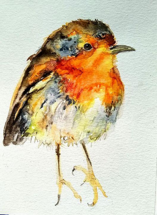 Colorful bird - Daniela