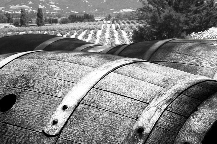 Wine and Cheese - Landscapes of the American West