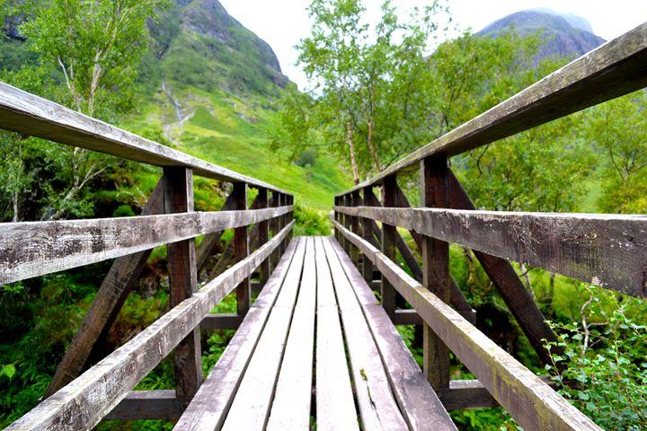 Bridge to wonder - Danielle Stilwell