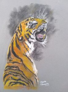 Tiger: Coal and Fire