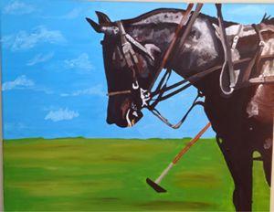 The Polo Pony