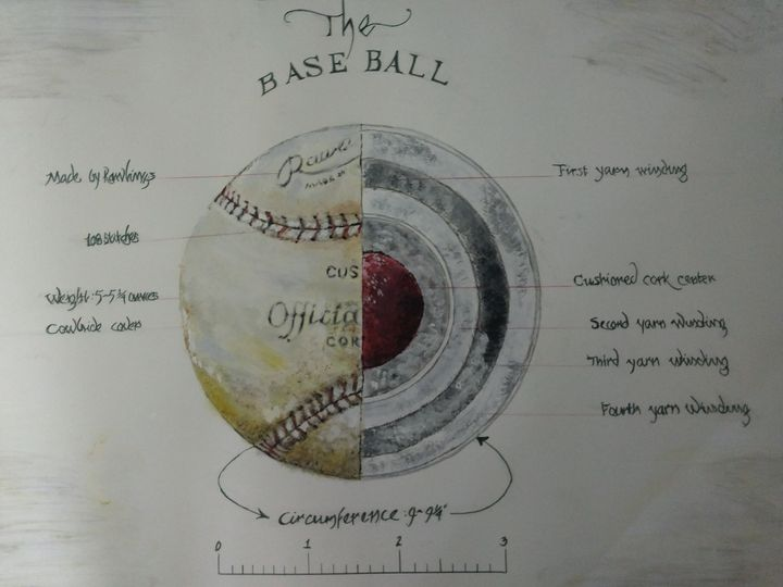Baseball - Anatomy - The Parker Gallery