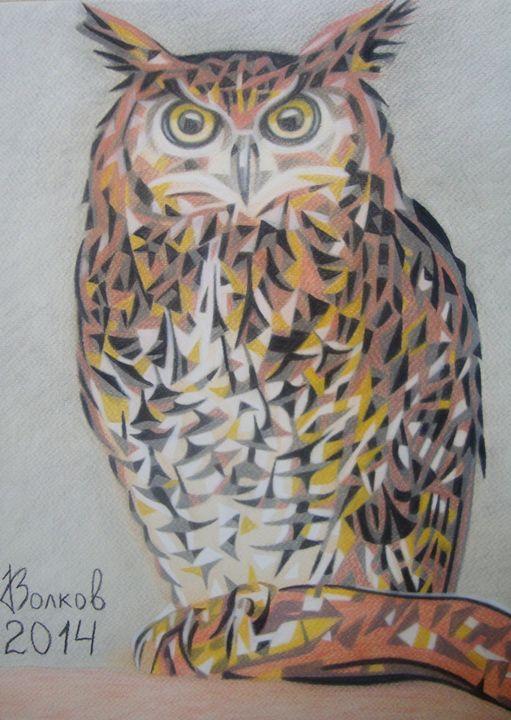 Owl - Volkov Art