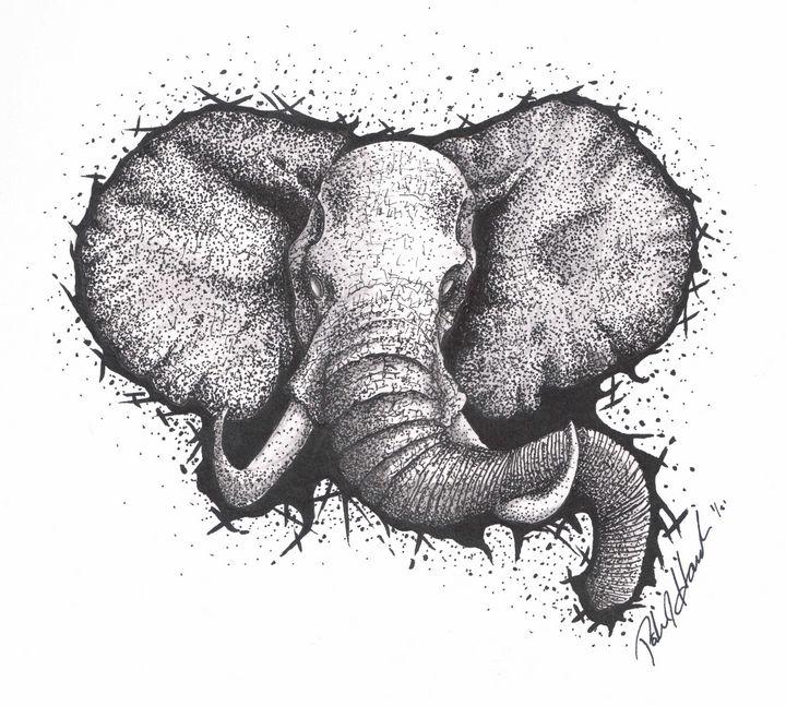 Black and white Elephant - PatHawkins_art