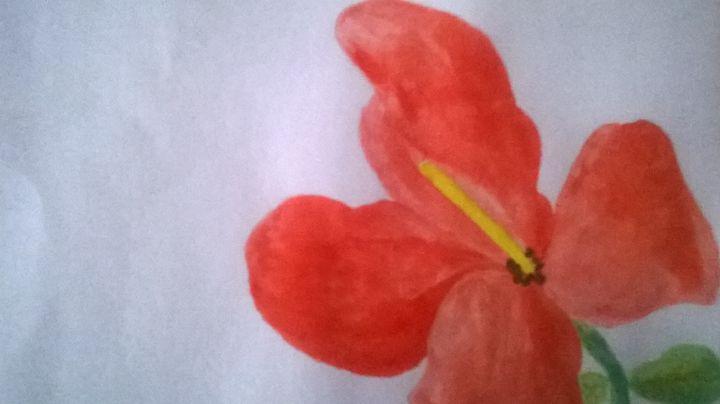 red flower - Miss Bradburn