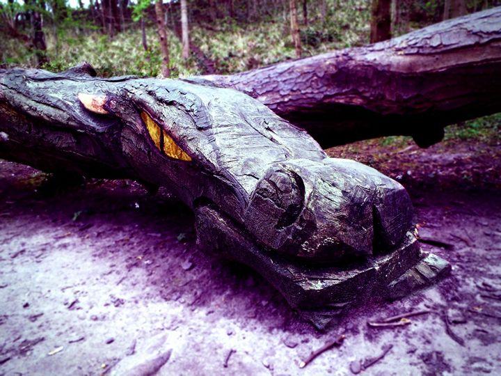Waking The Dragon - Colin McNaughton-Law