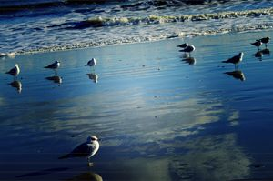 """Reflective Sands"""
