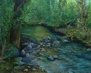 Carolina creek