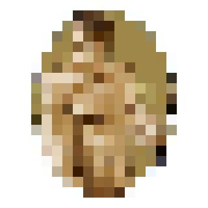 Woodsmen XI. Jaap - Anachorète_boï