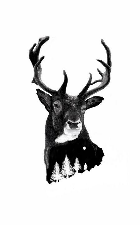 Deer by night - Art by Duc
