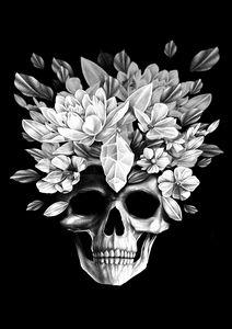 Skull in the dark - Darkness