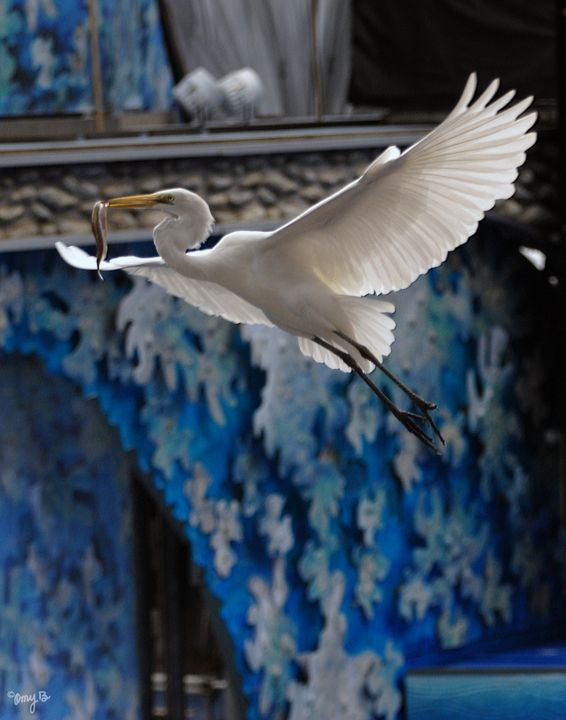 Great Egret 03 - Amy's Busy Bee Arts