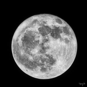 Black and White Full Moon - Amy's Busy Bee Arts