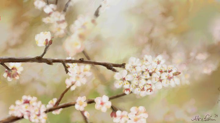Cherry Blossom Branch - Alice Paulson