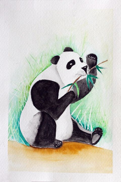 PANDA - WATERCOLOURS