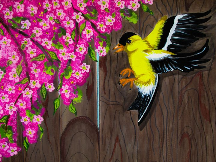 American Goldfinch - Dawn Siegler