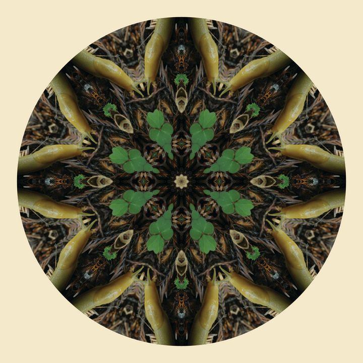 Slugdala #5 - The Art of Ryan Forsythe