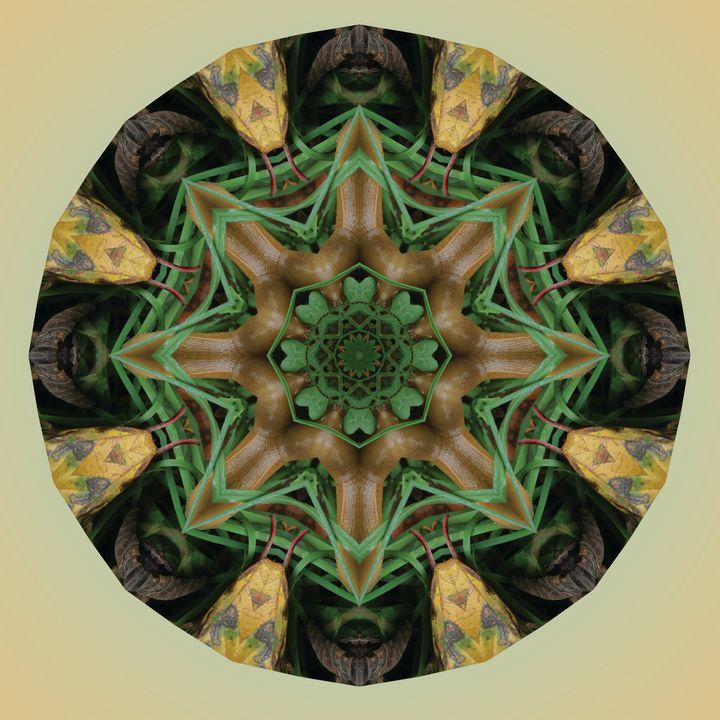 Slugdala #13 - The Art of Ryan Forsythe