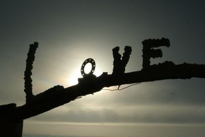 LOVE at Salvation Mountain