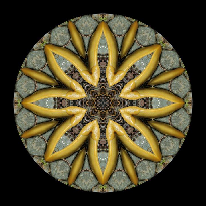 Slugdala #11 - The Art of Ryan Forsythe