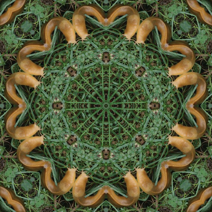 Slugdala #18 - The Art of Ryan Forsythe