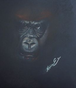 Gorilla gaze - Miriam Esparza