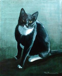 George the Tuxedo Cat
