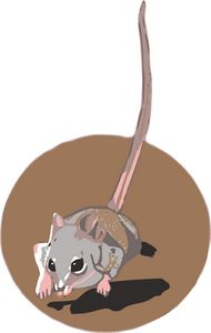 Running Marsupial Mouse