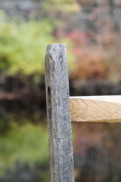 Fence Post - Amanda Pawlicki