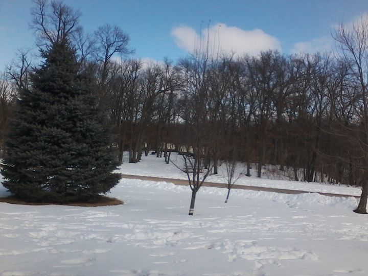 Snow Covered Field 4 - Pennie Dae