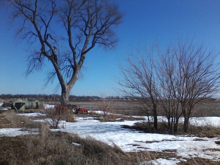 Snow Field - Pennie Dae