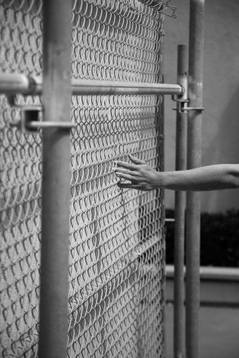 Fences - Koska Art