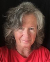Sandra J Schultz