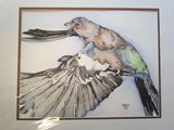 16 x 20 pen and ink bird matted