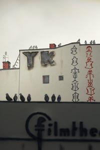 Prenzlauer Berg Kino, 2018