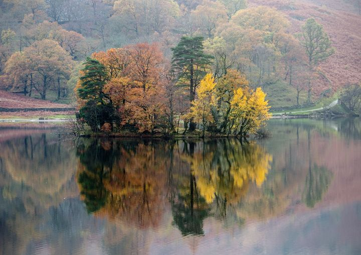 Autumn at Rydal Water - Peter Jarvis