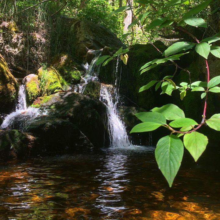 Naramata Falls - Austin Sanderson