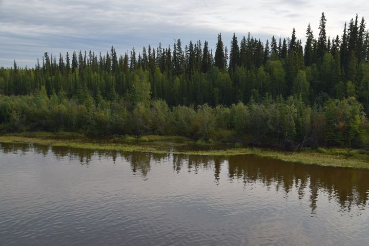 Reflections on Chena - Riveting Images