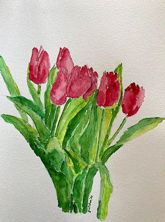 tulips - 𝓦𝓲𝓵𝓭 𝓢𝓸𝓾𝓵 ꨄ