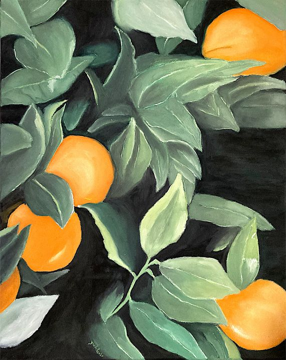 Oranges and Greens - 𝓦𝓲𝓵𝓭 𝓢𝓸𝓾𝓵 ꨄ