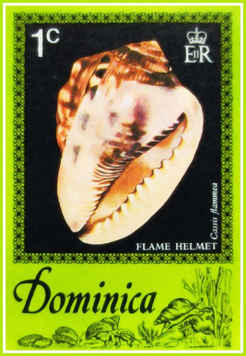 Flame Helmet - Lanjee