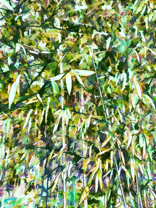 Bamboo forest in South carolina - Lanjee