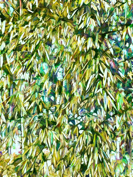 Bamboo green forest background - Lanjee