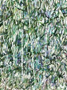 Green bamboo tree in a garden - Lanjee