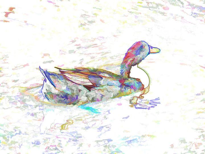 Ducks swim in a pond 3 - Lanjee
