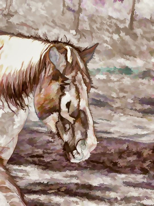 Portrait of Red Horse in summer - Lanjee