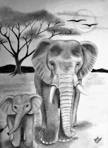 Elephants - Roger Mendonca
