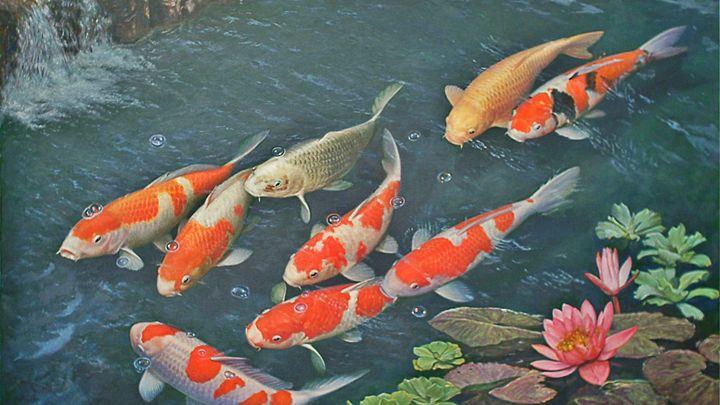 Ocean Sea Fishes Fish Underwater Koi - Ariana2u